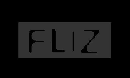 FLIZ - Filmliebhaber Zug